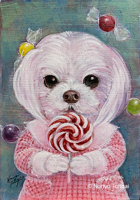 キャンディ大好き